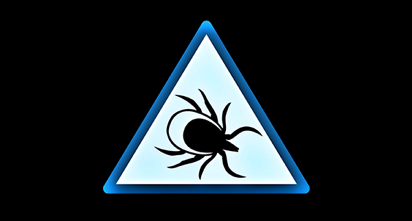 A Countermeasure To Lyme
